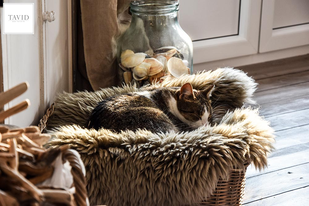 Katzenkorb Rattan Lammfell
